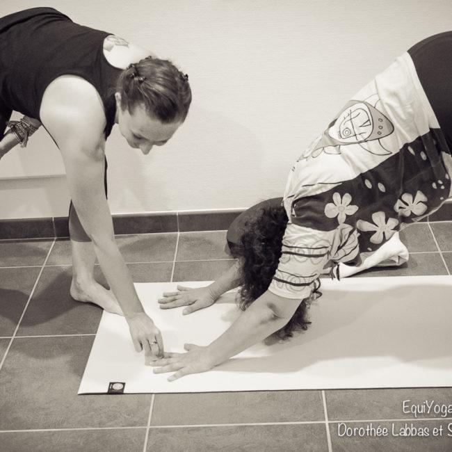 Le Yoga de Sophie Ancel