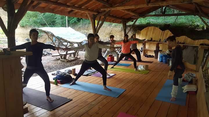 Yoga dans les bois